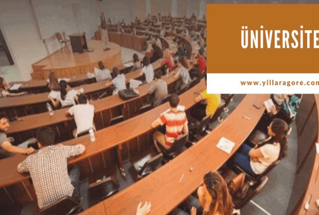 Yıllara Göre Üniversiteye Yerleşen Sayıları